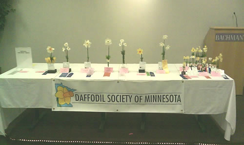 2010 Awards Table