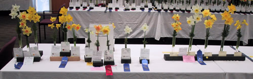 2009 MN Awards Table